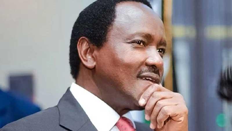 JAMVI: Je, Mlima Kenya waweza kumuunga mkono Kalonzo uchaguzini 2022?