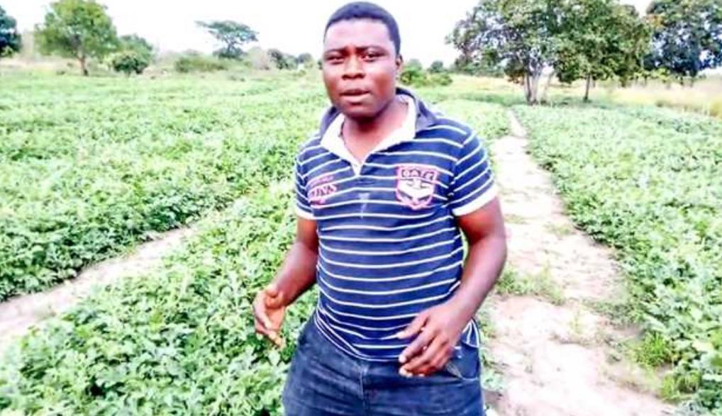 Mkuzaji stadi wa matikitimaji Pwani anayetaka vijana wasilaze damu